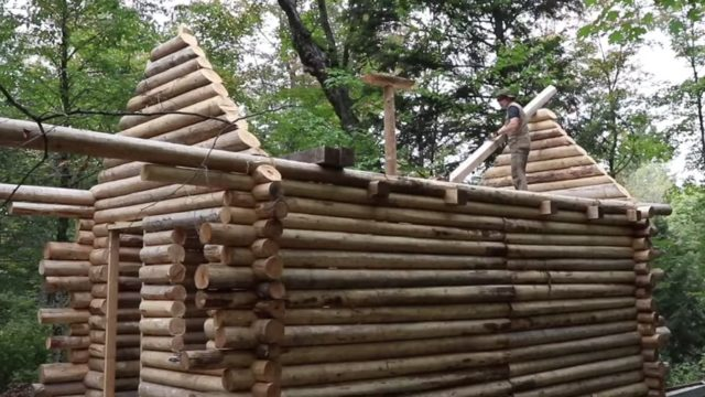 Log cabin time lapse: A Canadian man builds a shelter from scratch
