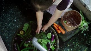 Koi are unusual kitchen helpers in the kabata of Harie, Japan