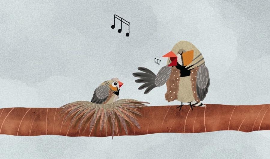 Listen to the Mockingbird - Birdwatching Dot Com