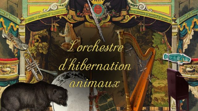 L'orchestre d'hibernation animaux and how animals hibernate